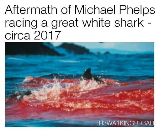 Meme joking around the aftermath of Michael Phelps racing a great white shark.