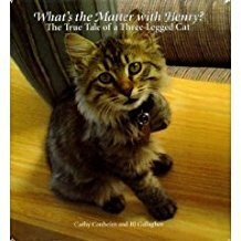 Cat - What's the Maner with Henry? The Trae Taie of aThre legged Cat aya