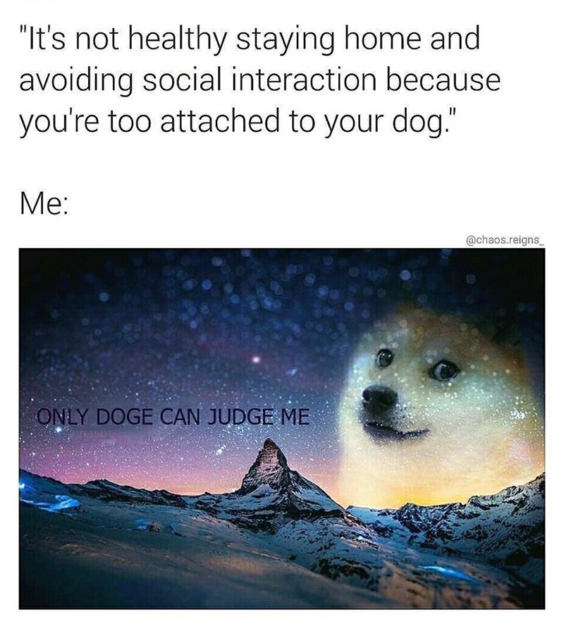 "Text - ""It's not healthy staying home and avoiding social interaction because you're too attached to your dog."" Me: @chaos.reigns ONLY DOGE CAN JUDGE ME"