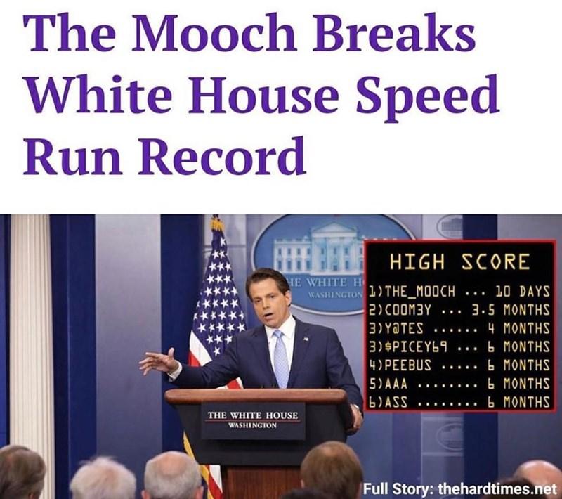 anthony scaramucci White house Memes politics - 9059916288