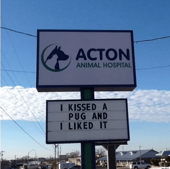 Street sign - ACTON ANIMAL HOSPITAL I KISSED A PUG AND I LIKED IT