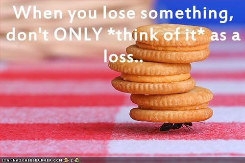 Cheezburger Image 9060242688