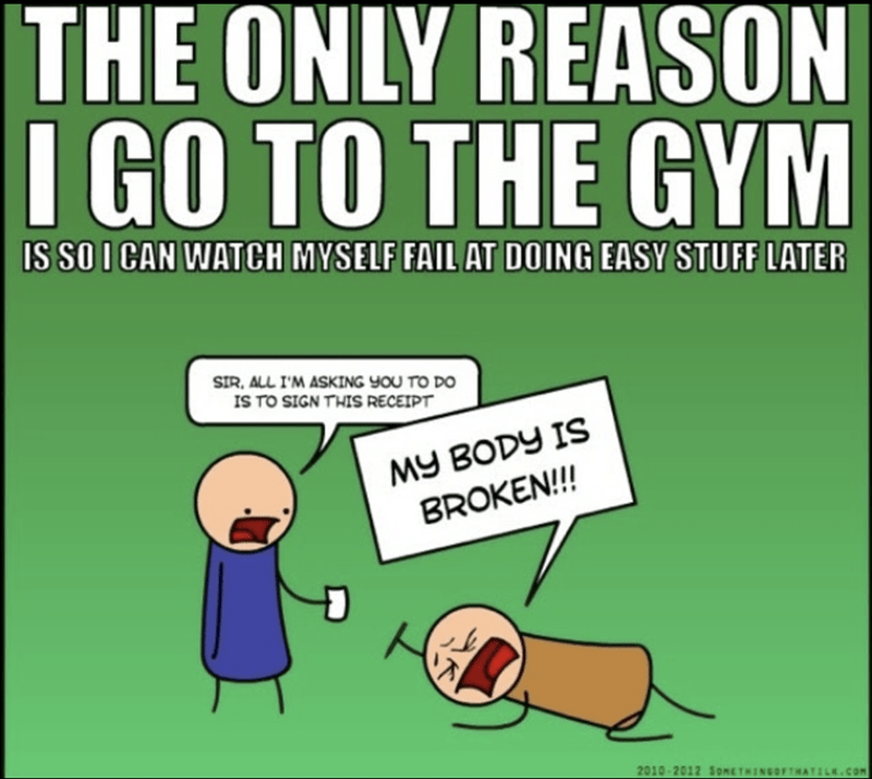 Cartoon - THE ONLY REASON I GO TO THE GYM IS SO I CAN WATCH MYSELF FAIL AT DOING EASY STUFF LATER IR, ALL I'M ASKING YOU TO DO IS TO SIGN THIS RECEIPT MY BODY IS BROKEN!!!