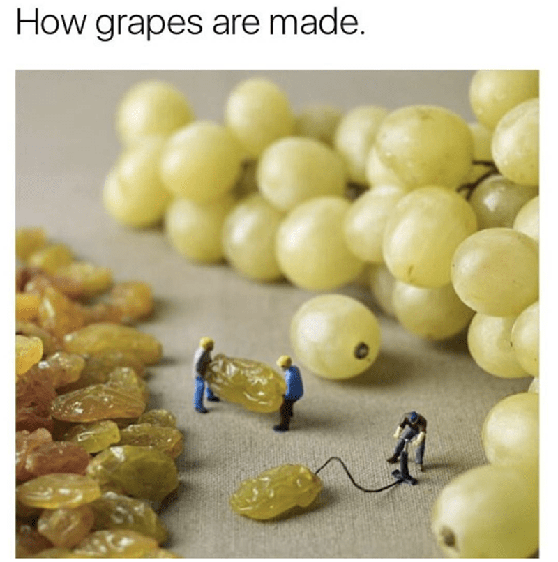 Cute meme of little tiny people inflating rasins to make them into plump grapes
