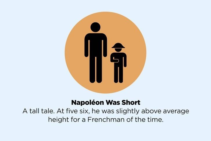 Product - Napoléon Was Short A tall tale. At five six, he was slightly above average height for a Frenchman of the time.