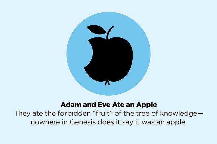 "Logo - Adam and Eve Ate an Apple They ate the forbidden ""fruit"" of the tree of knowledge- nowhere in Genesis does it say it was an apple."