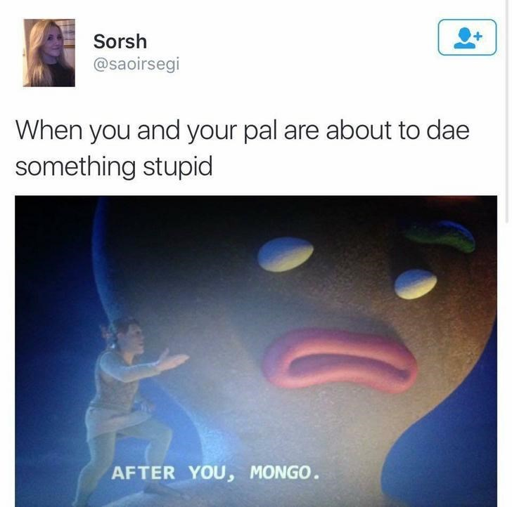 funny scottish posts on twitter When you and your pal are about to dae something stupid AFTER YOU, MONGO.