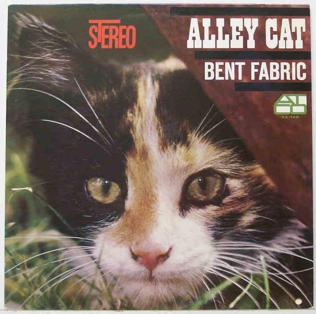 album cover - Cat - ALLEY CAT SEREO BENT FABRIC an-14