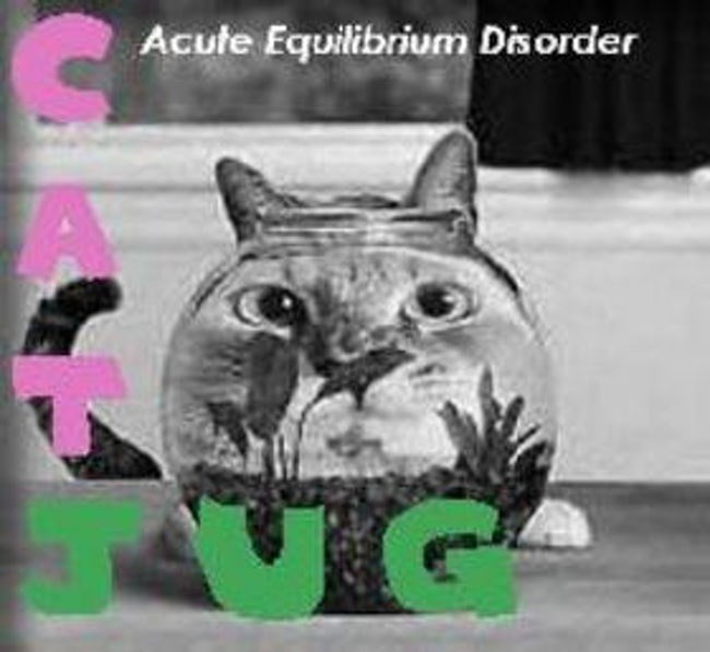 album cover - Cat - Acute Equilibrium Disorder