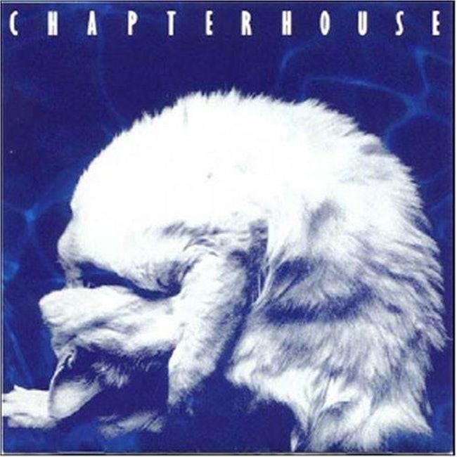 album cover - Fur - HAPTERH0USE