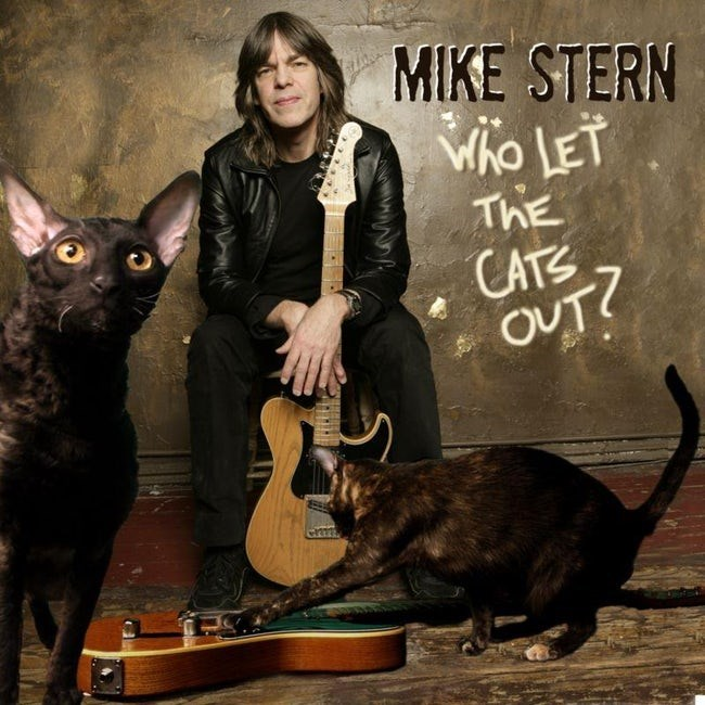 album cover - Cat - MIKE STERN Who LET ThE CATS OUT?