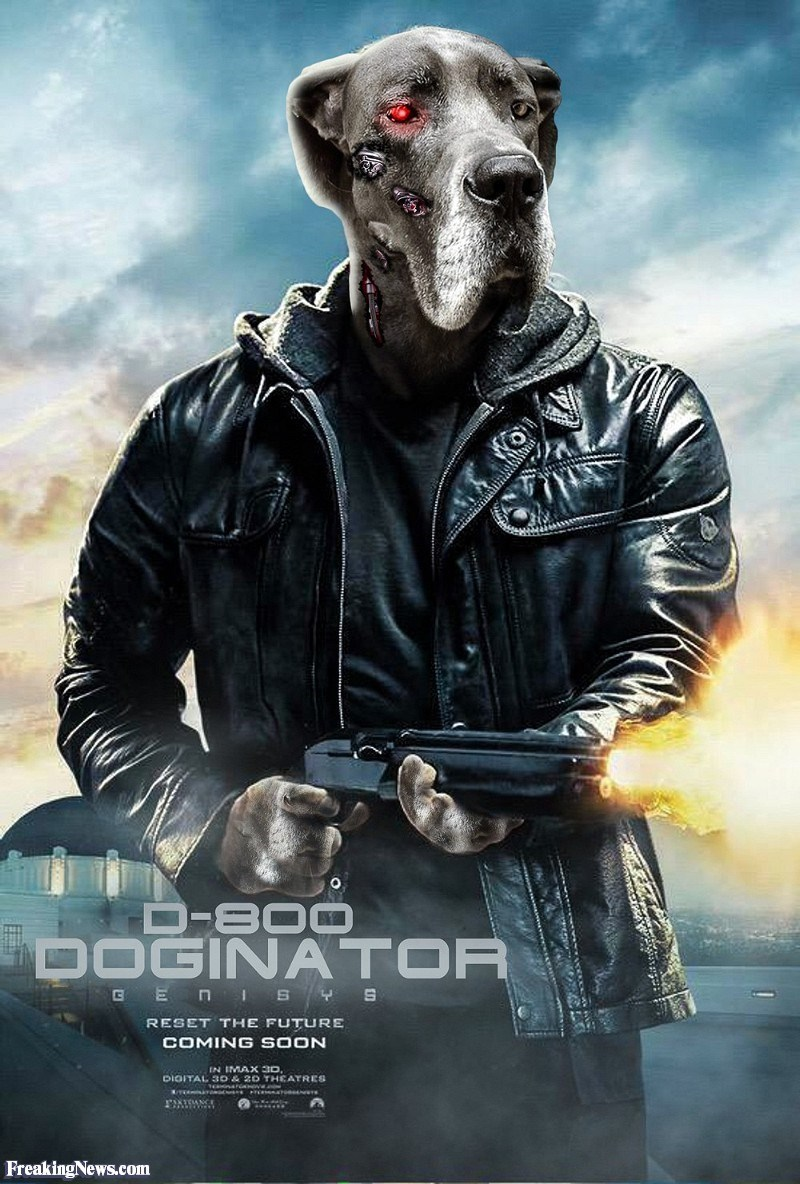 Movie - D-B00 DOGINATOR GE nisYS RESET THE FUTURE COMING SOON IN IMAX 3D DIOITAL 3D & 20 THCATRES FreakingNews.com