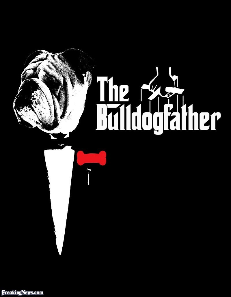 Font - 'The ildogfalther FreakingNews.com