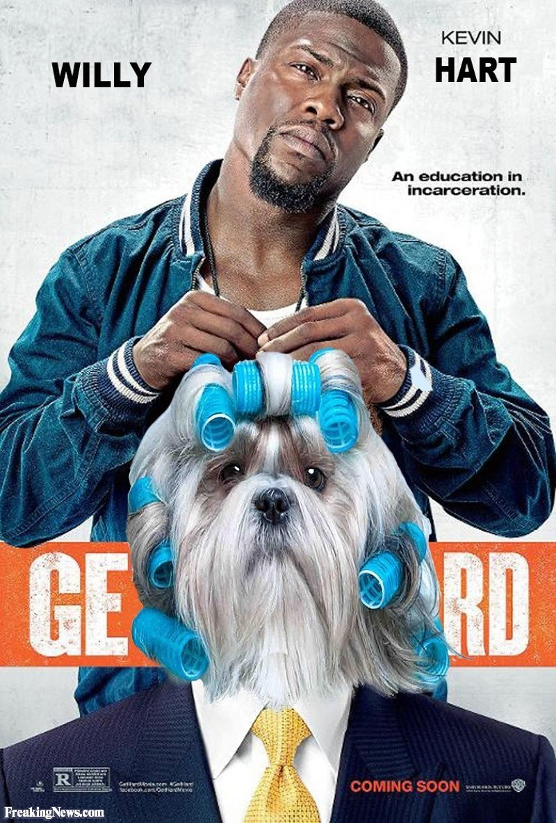 Dog - KEVIN HART WILLY An education in incarceration. GΕΛRD R Cattrosren Geti Sacebook.cOotioncci COMING SOON w.axT FreakingNews.com