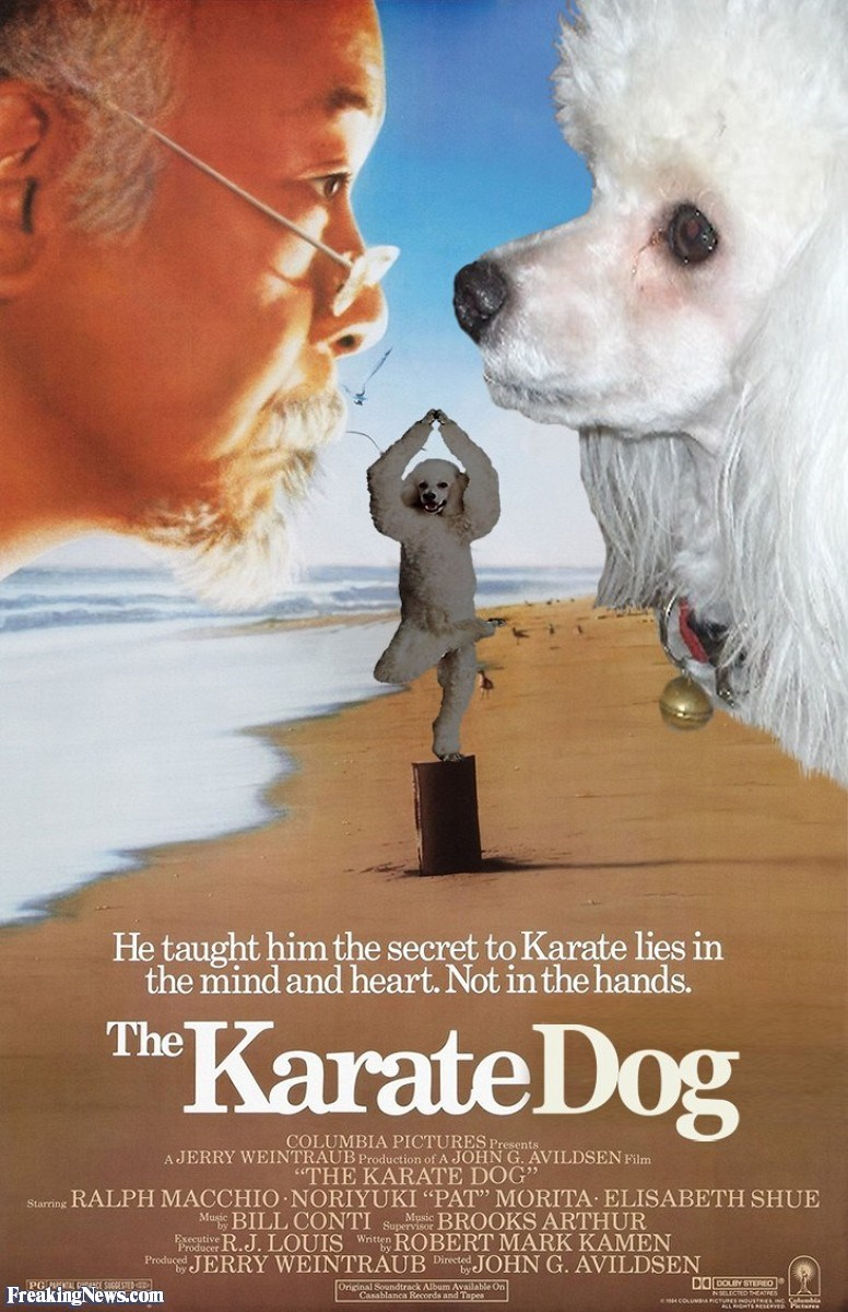 "Companion dog - He taught him the secret to Karate lies in the mind and heart. Not in the hands. KarateDog The COLUMBIA PICTURES Presents AJERRY WEINTRAUB Production of A JOHN G. AVILDSEN Film ""THE KARATE DOG"" RALPH MACCHIO NORIYUKI ""PAT"" MORITA ELISABETH SHUE Mugie BILL CONTI rodist R.J. LOUIS WrROBERT MARK KAMEN Produced JERRY WEINTRAUB Dir JOHN G. AVILDSEN BROOKS ARTHUR Music Executi Original Soundtrack Album Available On Freaking News.com"