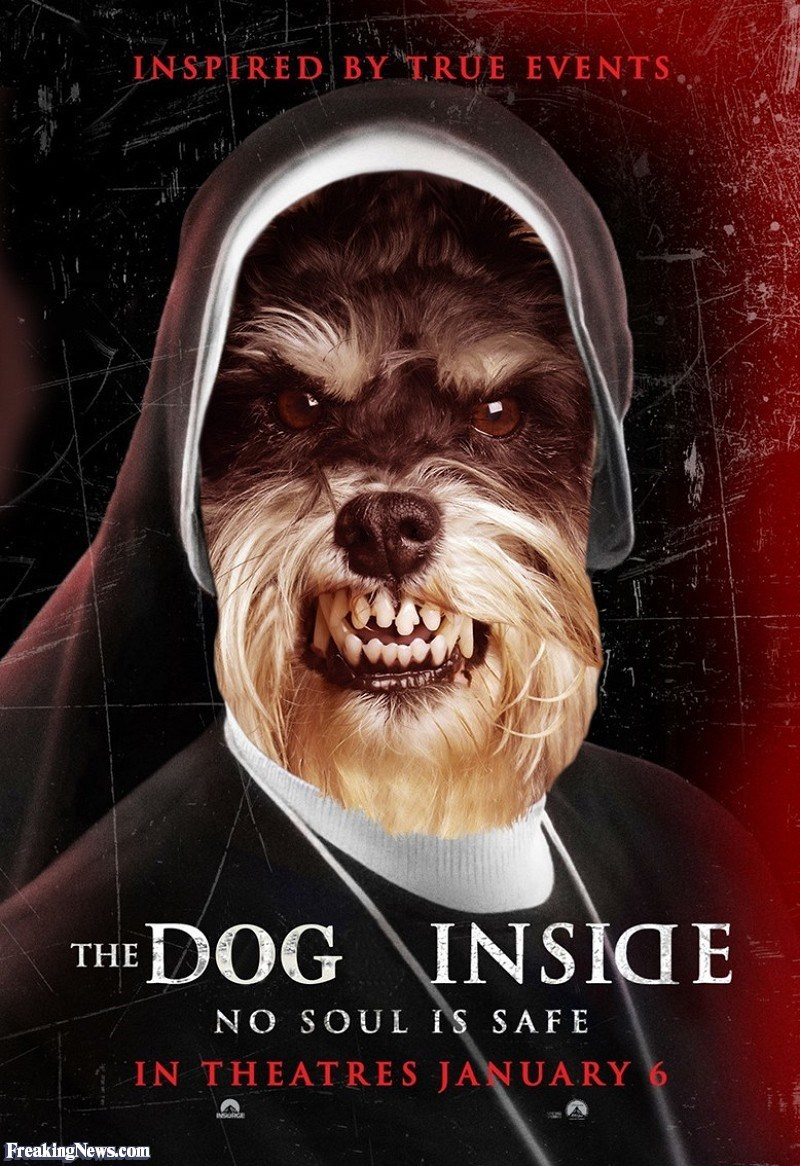 Poster - IN SPIRED BY TRUE EVENTS DOG INSICE THE NO SOUL IS SAFE IN THEATRES JANUARY 6 Freaking News.com