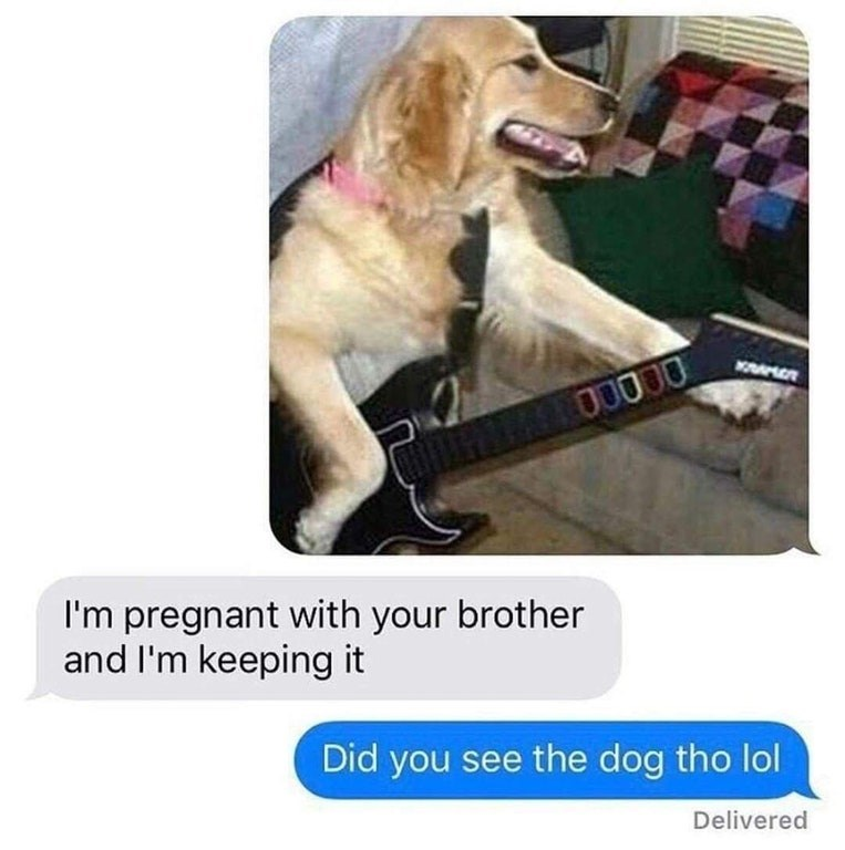 Funny meme about a guy texing a photo of a dog playing guitar hero, response is that girl is pregnant with his brother and keeping it, he ignores text and asks again about the dog.