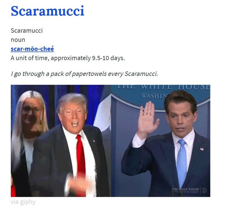 Text - Scaramucci Scaramucci noun scar-moo-cheé A unit of time, approximately 9.5-10 days. I go through a pack of papertowels every Scaramucci. WIll HOUSE WASHIN THE SAILY SHOW ww TRE VO NOAN via giphy
