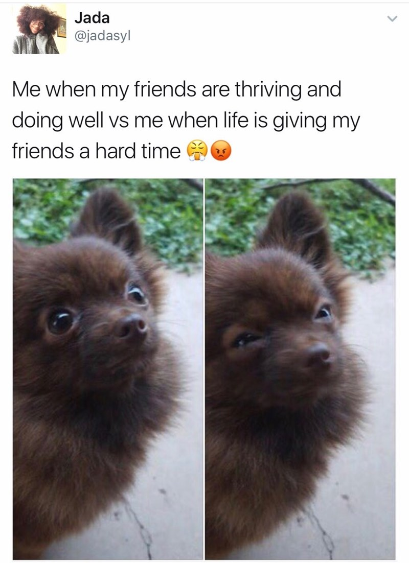 Dog as both happy and angry to show how it feels when friends are doing well VS when life is giving friends a hard time.