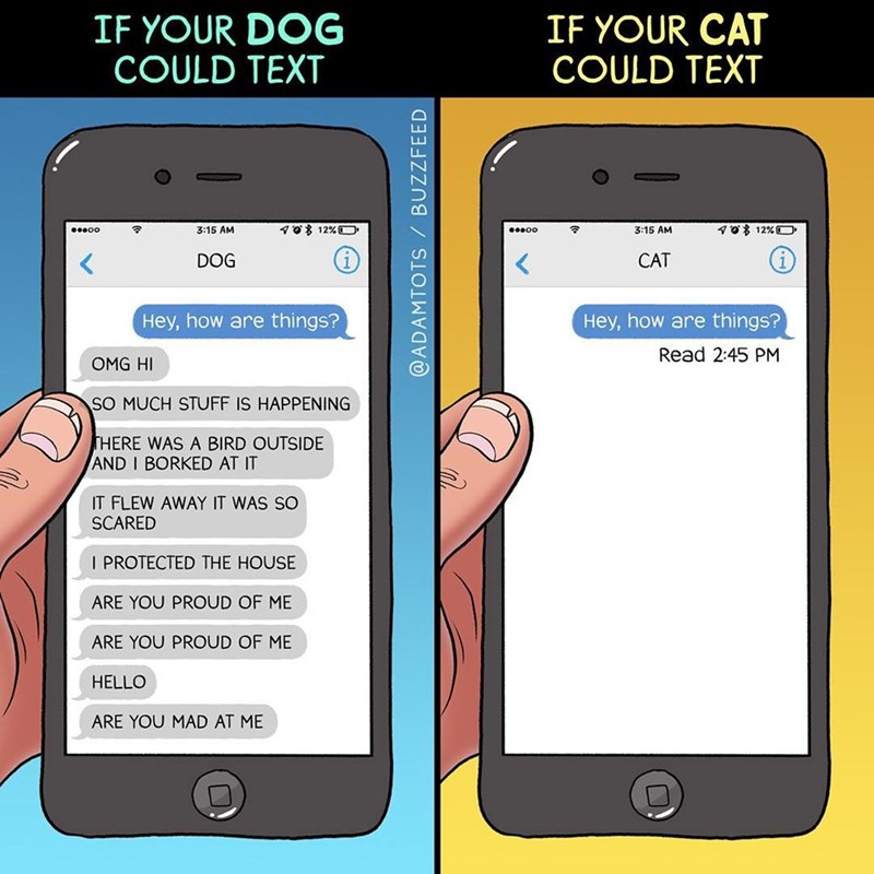funny web comic about how dogs and cats would text if they could do so.