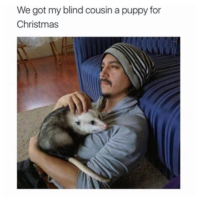 Funny meme about giving blind cousin a dog, it's a photo of a man with a possum.