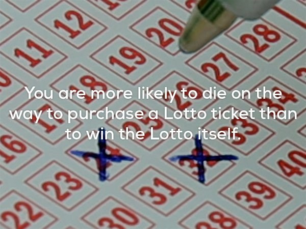 Strange fun fact about how you are more likely to die on the way to purchase a Lotto ticket than to win the lotto itself.