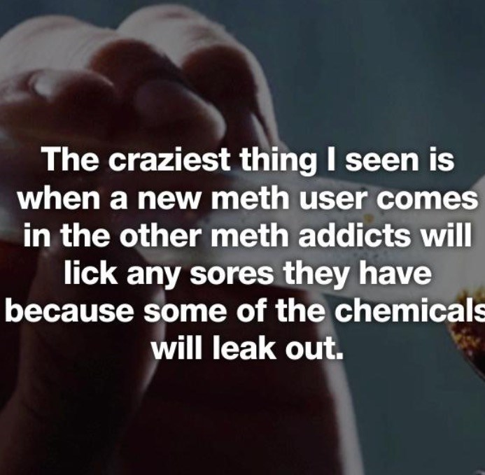 Text - The craziest thing I seen is when a new meth user comes in the other meth addicts will lick any sores they have because some of the chemicals will leak out.