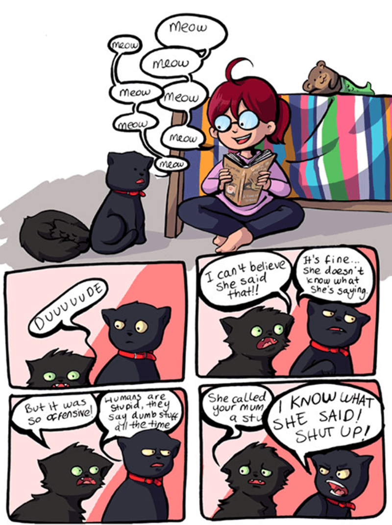 a funny comic of a human reading to her cats but just saying meow meow and what she is actually saying to them is actually very offensive