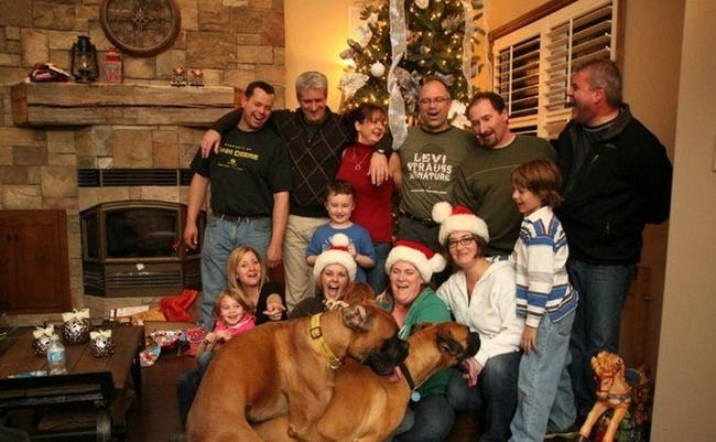 Christmas family portrait ruined by the dogs humping in the foreground