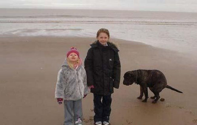 Winter beach picture with the dog pooping right next to the kids.l