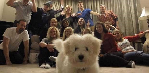 Dog gets right up on the camera in a group photo