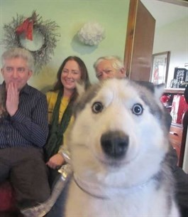Surprised and smiling dog gets all up in the camera