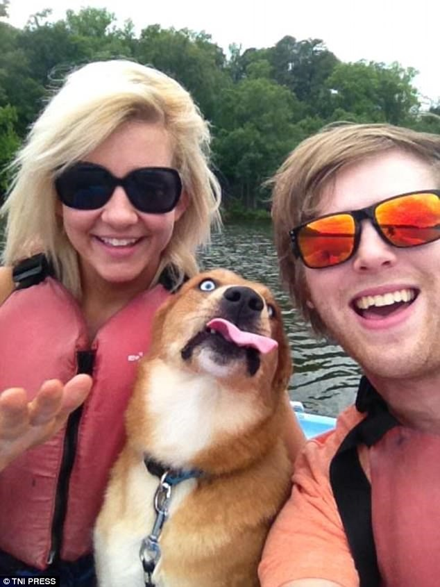 Dog in selfie sticking out his tongue.