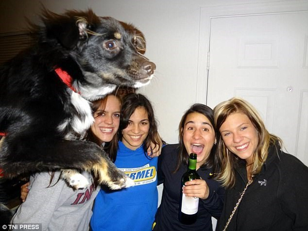 flying dog gets into party pic