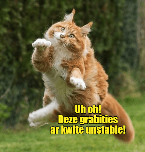 a funny meme of a cat not understanding gravity