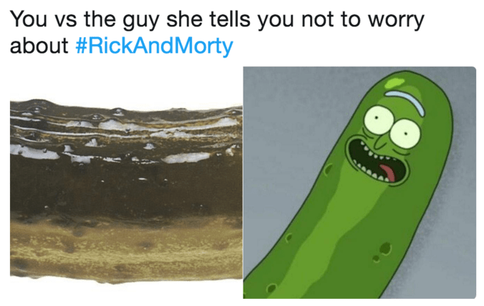 comparison between pickle Rick and a closeup pic of a real pickle