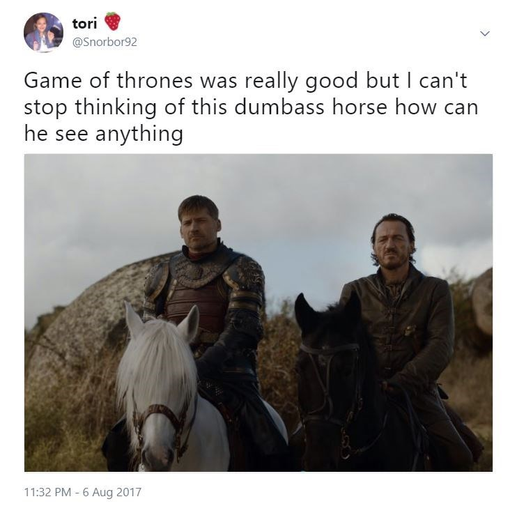 Funny meme of Jamie Lannister and Bronn on horses next to each other in Episode 4 of season 7 and that white horse can't see anything.