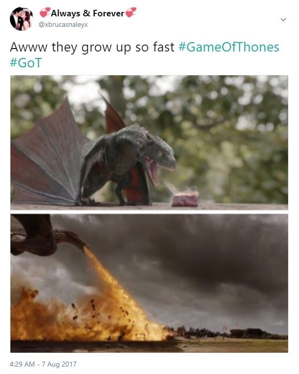 Meme of how the dragons grew up so fast, first as baby trying to light meat on fire, then a fire breathing dragon going into battle.