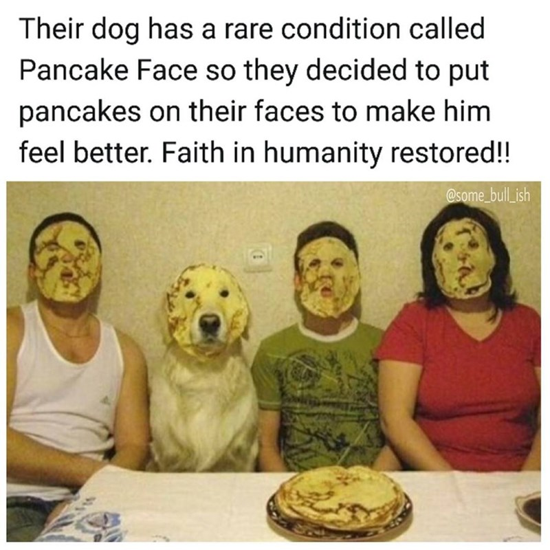 Funny meme about dog with a condition called pancake face.