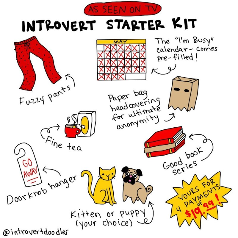 """Text - AS SEEN ON TV INTROVERT STARTER KIT MAY The 'm Busy"""" calendar Connes Pre-filled! Fuzzy pants Paper bag head covering for ultimate anonymity Fine tea GO AWAY Good book Series Doorknob hanger Kitten or puppy @introvertdoodlecyour choice) e 4 PAYMENTS of YOURS FOR $19 * 99!"""
