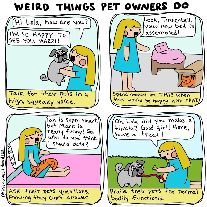 Cartoon - WEIRD THINGS PET OWNERS DO Look, Tinkerbel, Your new bed is assembled! (Hi Lola, houw are you? IM So HAPPY TO SEE YOU, MARZI! Taik for their pets in a high, saveaky voice Spend money on THIS when Fhey would be happy with THAT lan is Super Smart, but Mark is really funny! So, who do you think should date? Oh, Lola, did you make a tinkle? Good girl! Here, have a treat! ASK their pets questions, Knowing they can't answer Praise their pets for normal bodily functions. introvert dood les