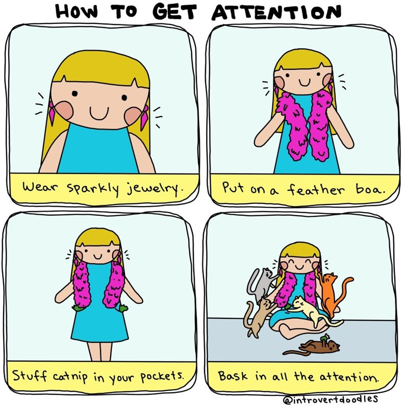 Cartoon - How To GET ATTENTION Wear sparkly jewelry Put on a feather boa. Stuff catnip in your pockets Bask in all the attention @introvertdoodles