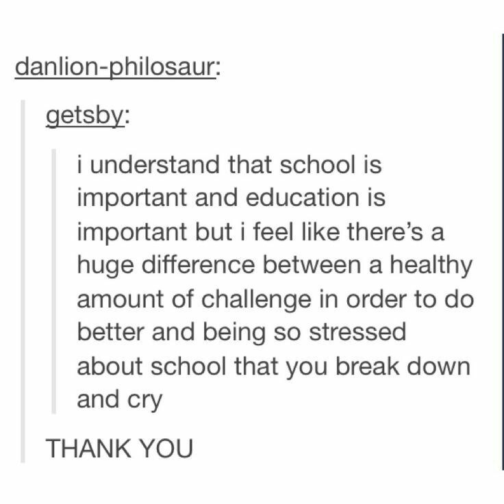 school meme - Text - danlion-philosaur: getsby: i understand that school is important and education is important but i feel like there's a huge difference between a healthy amount of challenge in order to do better and being so stressed about school that you break down and cry THANK YOU