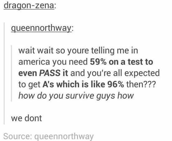 school meme - Text - dragon-zena: queennorthway: wait wait so youre telling me in america you need 59% on a test to even PASS it and you're all expected to get A's which is like 96% then??? how do you survive guys how we dont Source: queennorthway