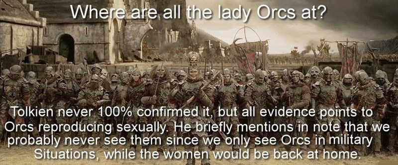 People - Where are all the lady Orcs at? Tolkien never 100% cohfirmed it, but all evidence points to Orcs reproducing sexually. He briefly mentions in note that probably never see them since we only see Orcs in military Situations, while the women would be back at home