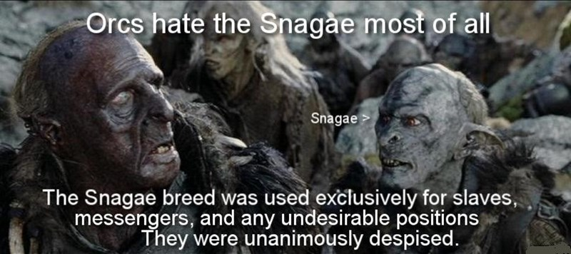 Head - Orcs hate the Snagae most of all Snagae The Snagae breed was used exclusively for slaves, messengers, and any undesirable positions They were unanimously despised.