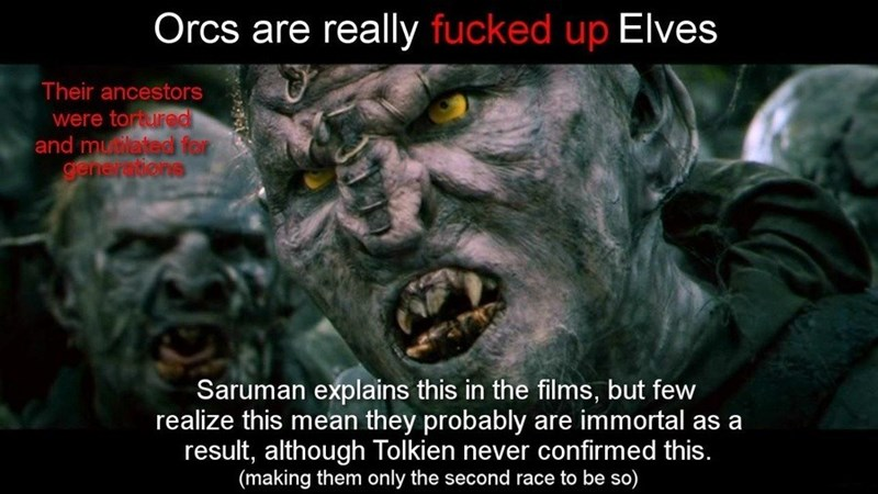 Photo caption - Orcs are really fucked up Elves Their ancestors were torured and mutlated for generations Saruman explains this in the films, but few realize this mean they probably are immortal as a result, although Tolkien never confirmed this. (making them only the second race to be so)