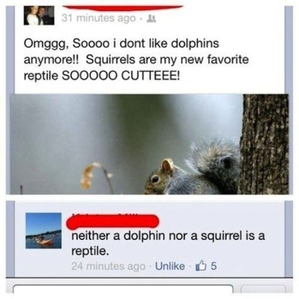 Facebook user who thinks squirrels are reptiles.