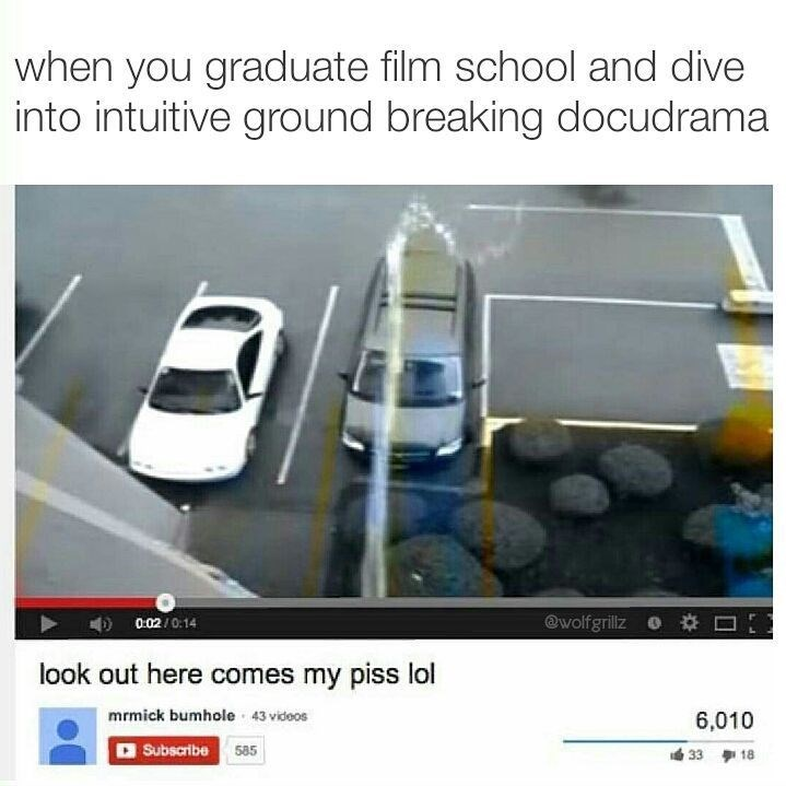 Funny meme from wolfgrillz about graduating from film school and filming yourself pissing on a car.