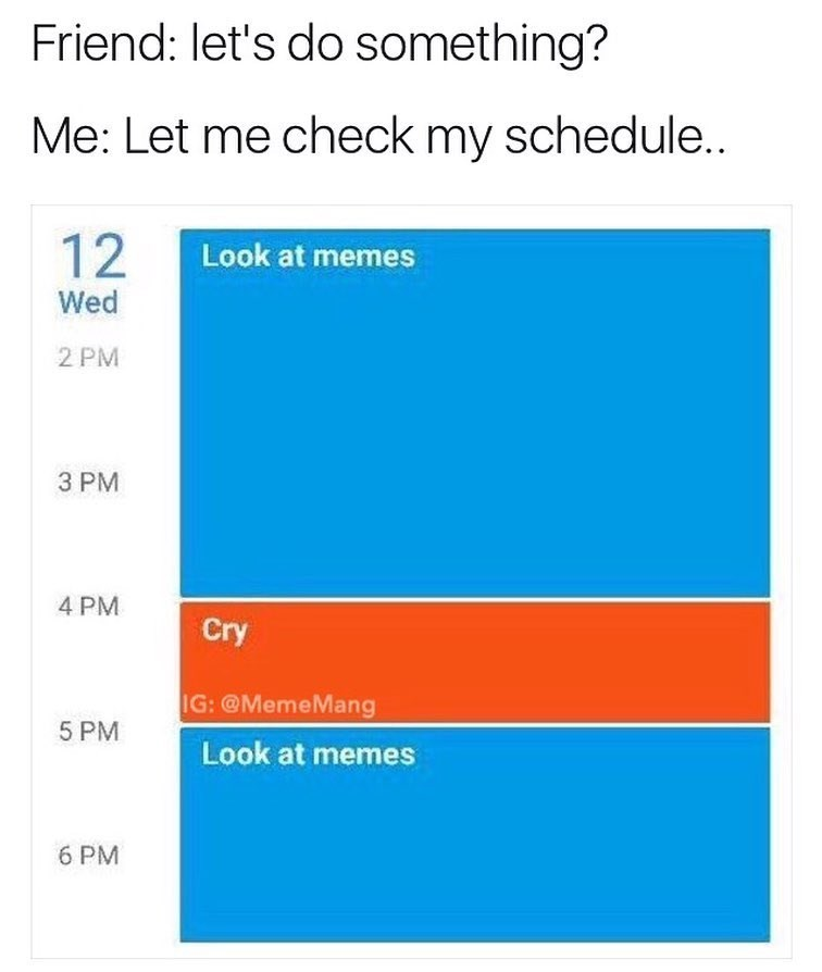 Funny meme about spending your days looking at memes and crying.